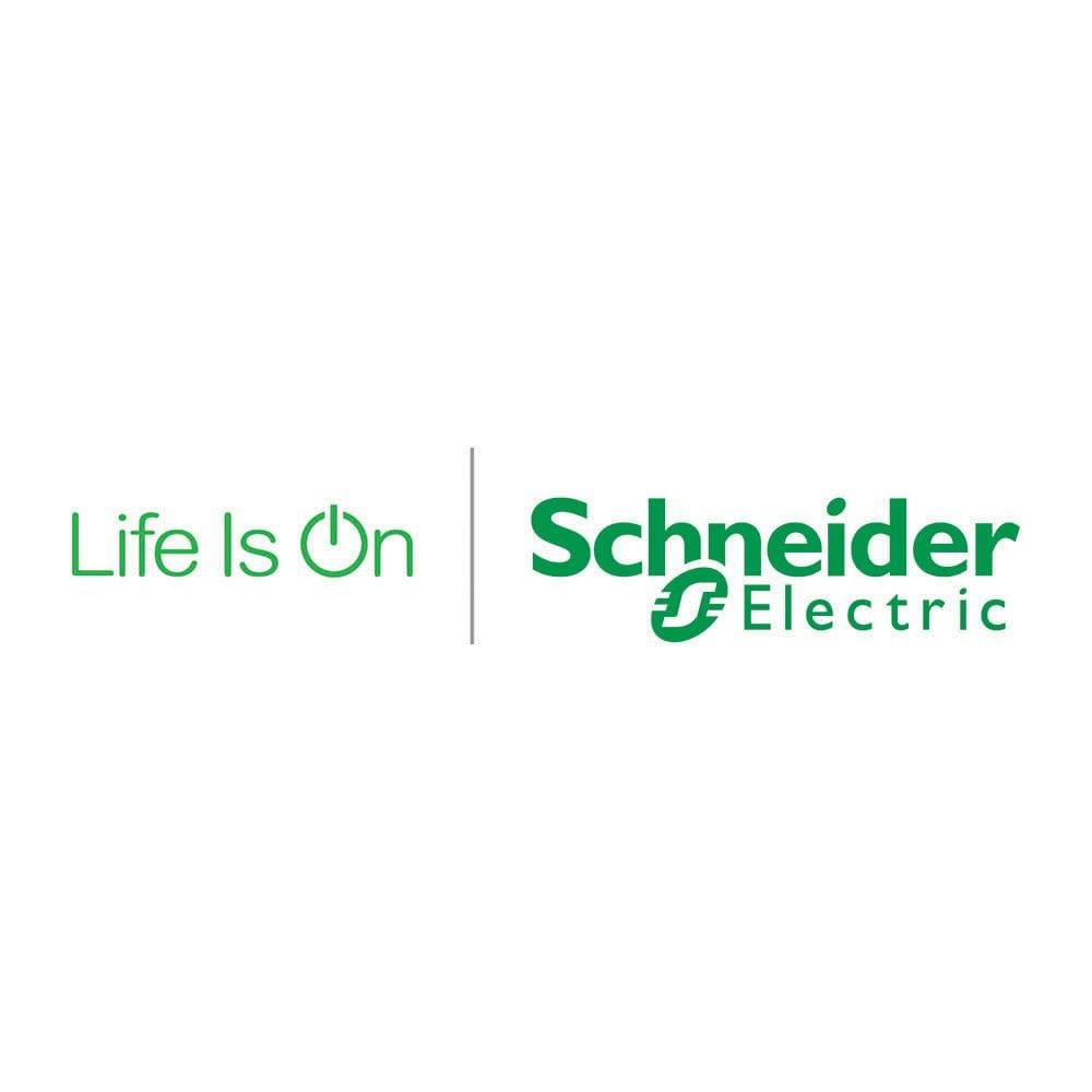 schneider_LIO_rev